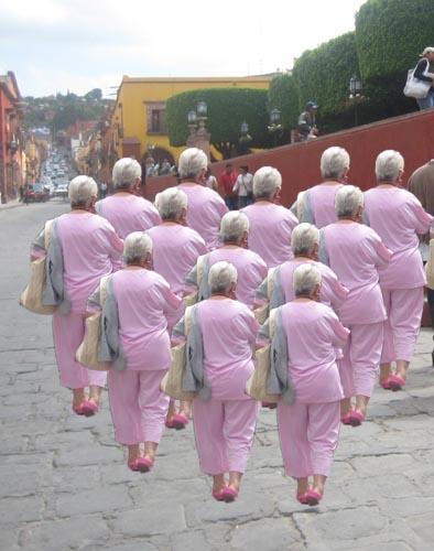 pink-ladies