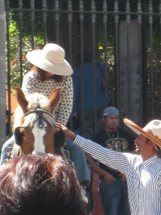 Horse sidekick